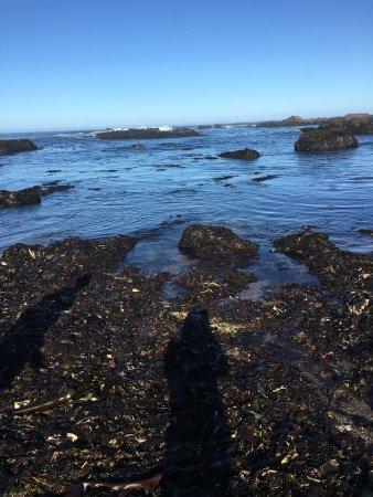 شاطئ جلاس: photo2.jpg