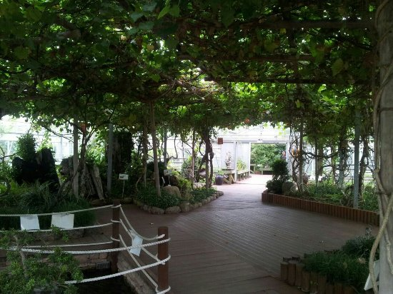 Ansan Botanical Garden
