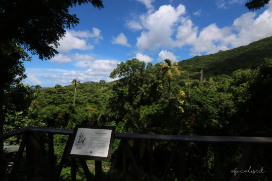 Basseterre, St. Kitts: VIew of Wingfield rumery