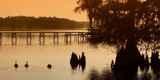 Jennings, LA: Lake Arthur, LA