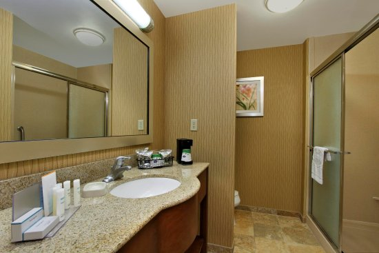 Hampton Inn Exmore Standard bathroom