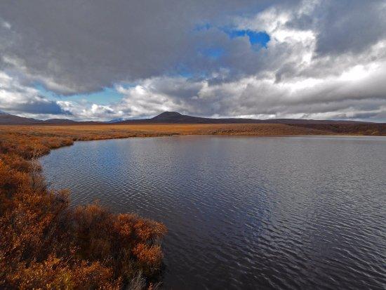 Tombstone Territorial Park: Two Moose Lake