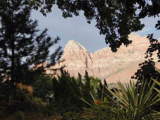 Desert Pearl Inn: photo from the grounds