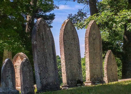 Mount Hope Garden Cemetery 사진