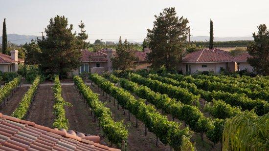South Coast Winery Resort & Spa Photo