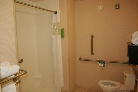 Flint, MI: Accessible Bathroom