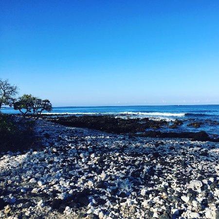 Hawaii Ocean Floor