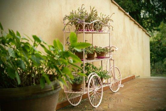 Al Gelso Bianco Farm-Holiday Resort Photo