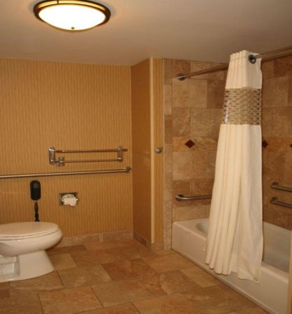 Hampton Inn & Suites Aberdeen: Accessible bathtub.