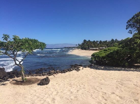 Four Seasons Resort Hualalai: Four Seasons Beach