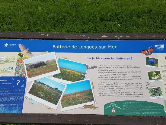 Longues-sur-Mer, Francja: 20160606_141035_large.jpg