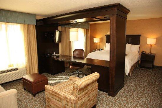 Hampton Inn & Suites Carlsbad: King Studio Suite