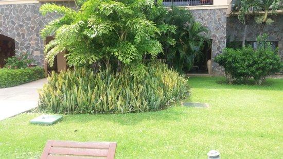 Reserva Conchal Beach Resort, Golf & Spa: My first floor suite was behind this garden.