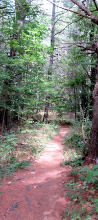 Wilmington, État de New York : Beautiful trail!