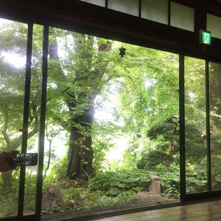 Kaminoyama, Jepang: 室内から見た景色。