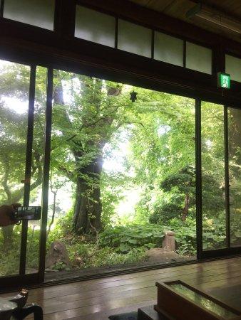 Kaminoyama, Jepang: photo0.jpg