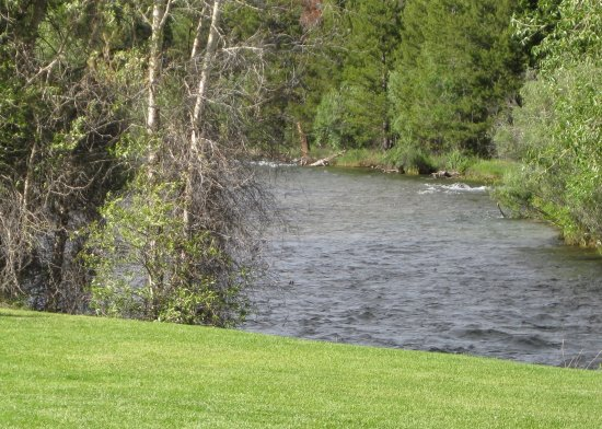 Pinedale, WY: Scenic Pine Creek meandering just over a 100 yards from your Cozy Cabin.