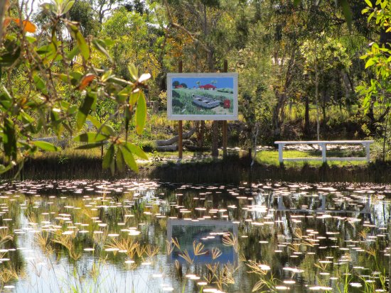 Agnes Water, Australia: Outdoor Art by Kent Barton