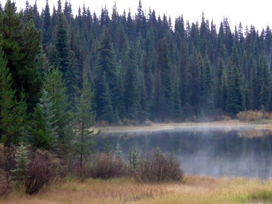Meadow Lake Fishing Camp: View from the Lodge