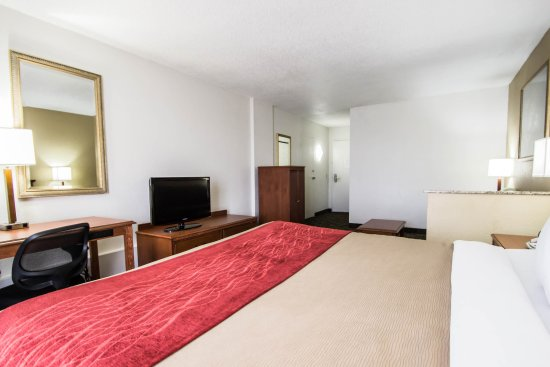 Quality Inn & Suites Winter Park Village Area: Guest Room