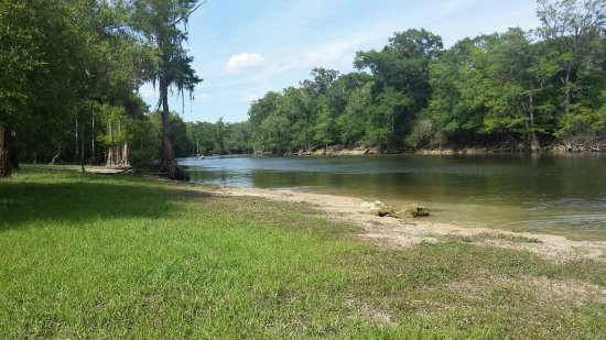 Florida central, FL: Santa Fe River, Suwanee county Florida