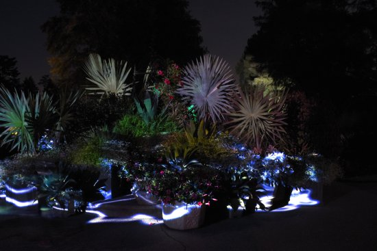 Kennett Square, PA: nightscape gardens