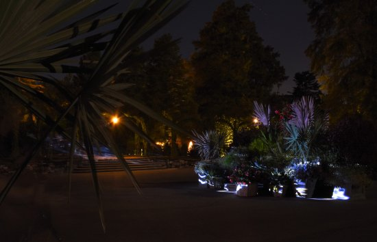 Kennett Square, PA: nightscape