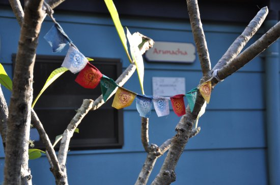 Mangrove Creek, Australia: Hill Dorm Flags