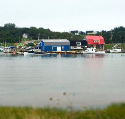 Stanley Bridge, Canadá: Carrs oyster bar