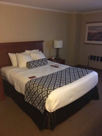 Crowne Plaza Toronto Airport Nice Hotel Near The