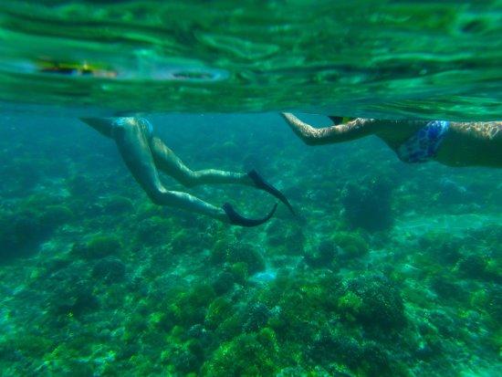 Gili Islands, Indonesia: Snorkeling di Gili Trawangan