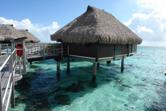 Our Overwater Bungalow 104 Picture Of Hilton Moorea