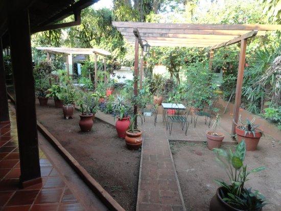 Los Helechos: Jardín interno