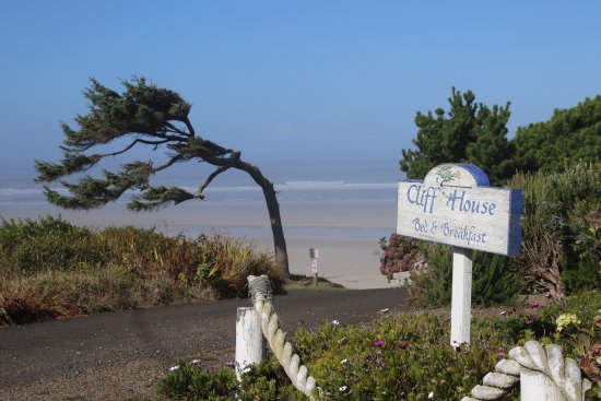Waldport, OR: Welcome to the Cliff House