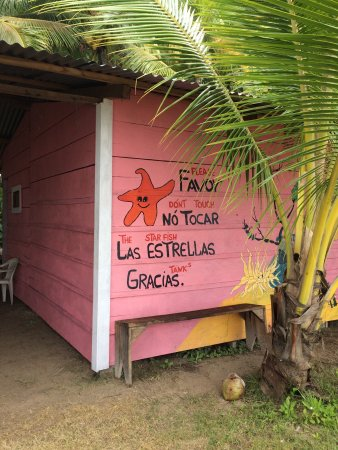 Bocas Town, Panama: photo2.jpg