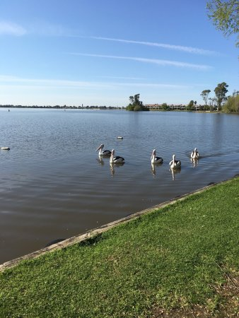 Mulwala, Australia: photo1.jpg