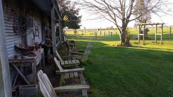 Geraldine, Nuova Zelanda: The farm garden out back of The Tin Shed
