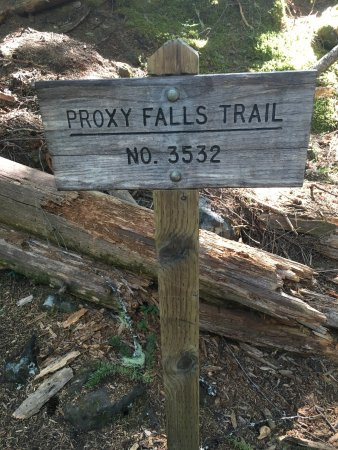 Sisters, OR: Trailhead for Proxy Falls hike