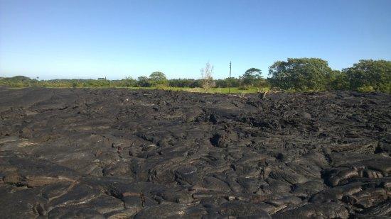 Pahoa, Hawái: Lava field