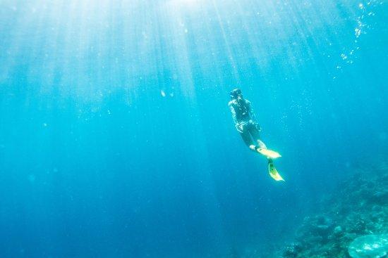 Qamea Island, Fiji: Snorkeling Maqai