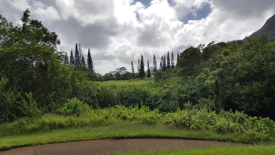 Kaneohe, Havaí: Ko'olau Golf Club