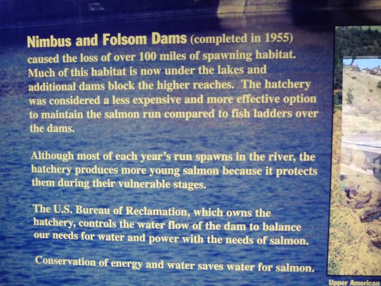 Gold River, CA: Nimbus and Folsom Dams history