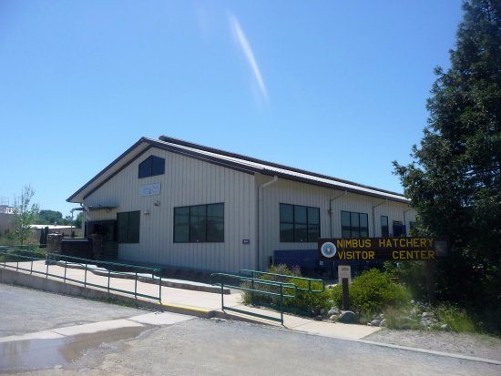 Gold River, CA: Nimbus vistor center