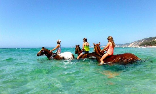 Sunshine Coast, Australia: Pferde reiten auf Rainbow Beach