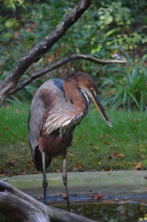 Dortmund Zoo : Zoo de Dortmund