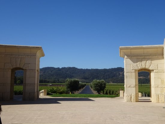 Opus One Winery: views