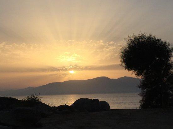 Μικρή Βίγλα, Ελλάδα: photo3.jpg