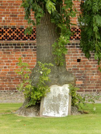Letzte Übrigbleibsel eines Friedhofs bei der Pfarrkirche in Nyborg