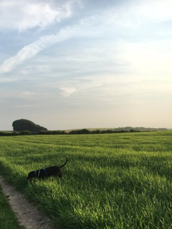 Hassocks, UK: Between Clayton and Ditchling
