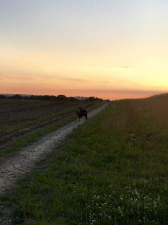 Hassocks, UK: Another sunset